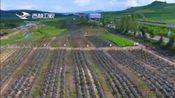 [吉林新闻联播]白山市与吉林森工集团签署战略合作协议