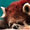 芒果瓷砖铺贴样片(19.10.28)-生活-高清完整正版视频在线观看-优酷