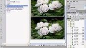 CSS3控制网页图像样式-12.2  设置图片的边框