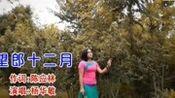 云南山歌《望郎十二月》杨华敏演唱的真好听