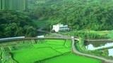 实拍,台湾农村美丽的风光