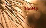 [云南新闻联播]楚雄黎族迎新年盛况在湖南卫视播出