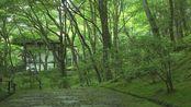 100. [4K] 常寂光寺 京都の庭園 Jojakko-ji Temple [4K] The Garden of Kyoto Japan