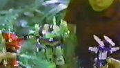 【变形金刚】G1 1984-1986 玩具广告