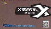 wca2016s2《炉石传说》vg小易 vs 同福丶瓦莉拉
