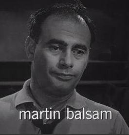 马丁·鲍尔萨姆