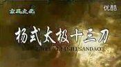杨氏太极十三刀(已手动添加动作名称)