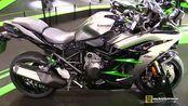 【素炮赏车】2020 Kawasaki Ninja H2 SX