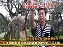 索南扎西全国巡回演唱会5月18静宁站(博艺唱片)—在线播放—优酷网,视频高清在线观看