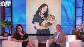 【破产姐妹】Max参加艾伦秀,表示自己既爱猫咪,又爱织毛衣