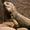 阳泉矿务局机修厂一九九一 郝新文-广告-高清完整正版视频在线观看-优酷