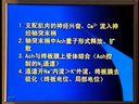 视频: [中国医科大学【生理学】].sl6 (全套见空间专辑)视频教