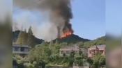 【湖北】湖北鄂州森林火灾,村干部救火牺牲-风陵渡口