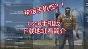 csgo手机版(下载地址)