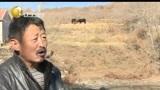 """[辽宁新闻]本溪海拔最高村落结束""""靠天吃水""""历史"""