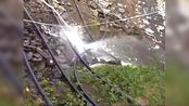 贵州省沿河自治县谯家镇一煤矿发生透水事故