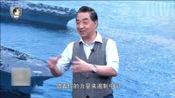 张召忠: 按照条例日本根本不能发展航母, 没想到现在慢慢放开了!