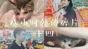 11.25-12.3小时外的碎片(十四)【和清歌】小猫日常/回家看医生/准备请病假/买了好多上头的零食