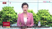 """上海正式启用电子驾照 司机体验""""手机亮证"""""""