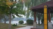 开封杞县的东湖公园,环境很好,原来开封杞县还有这么这个好地方