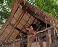金三角神秘原始部落,男人一辈子住在树上,繁衍后代全靠妻子主动