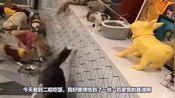 搞笑视频:这是九尾妖狐?这明明是隔壁的狗剩子嘛
