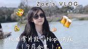 我去Napa酒庄啦!!及学校片段记录/美国留学生VLOG