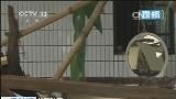 [视频]华西秋雨 重庆长寿:洪水渐退 但是影响仍在