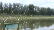 北京市水务局发布22处便民亲水垂钓区,加强环境整治