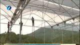 [福建卫视新闻]清流:台湾农民创业园花农灾后自救忙
