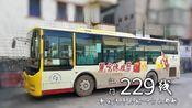 【POV.100】江门229线(新会汽车总站→台山都斛)72km+80站