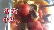 【超简单的番茄牛腩】生酮期吃牛肉要挑肥的/香喷喷暖洋洋/生酮饮食/戒糖/减脂期