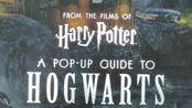 某宝价格300+的哈利波特官方周边书籍到底长什么样?