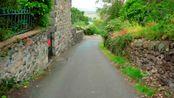 英国威尔士小镇街道获吉尼斯世界纪录认证,成为世界最陡街道