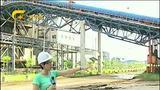 [广西新闻]加油鼓劲 腾跃广西·全面深化改革——玉林北流:推进新能源产业发展 经济和环保共赢
