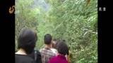 """[山东新闻联播]莱芜钢城区:用生态文明托起""""美丽乡村"""""""