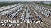 武汉4月8日解除离汉离鄂通道管控 火车站、机场、客运站全面消杀