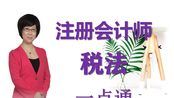 【2020注册会计师】CPA税务学东a主讲教师刘颖老师
