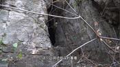 临沂费县有个南天门,有个山洞我都不敢进