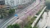 广州人民北路