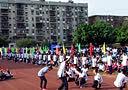 2014年柳州民高运动会开幕式(15)