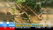 0001.中国网络电视台-[新闻直播间]孟加拉国:强降雨引发山体滑坡 134人遇难_CCTV节目官网-CCTV-13_央视网()[超清版]
