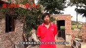 魏晓东老板采访视频