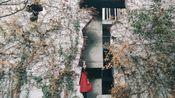 一拍成片——中国美术学院(象山校区)
