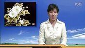 吉林省说课大赛 初中 美术《民间艺术的色彩搭配》视频课堂实录—在线播放—优酷网,视频高清在线观看