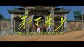 少林三大俗家弟子《少林弟子》 预告片 陈观泰 傅声 戚冠军主演