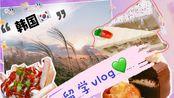「vlog」韩国留学/日常/the halal guys/ 弘大c27芝士蛋糕/ 弘大layered甜品店/ 首尔 天空公园 打卡日记(ω)