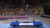 2015金沙年男性蹦床世界锦标赛决js678.com赛