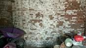 山东省菏泽市郓城县水堡乡赵东南赵北赵西南赵新管赵楼郓城北京水堡郓城水堡郓城北京水堡郓城