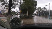 雨天坐在村口路边车上,听邓紫棋与胡鸿钧合唱《谁明浪子心》很配